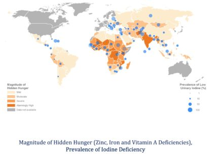 hidden-hunger-map