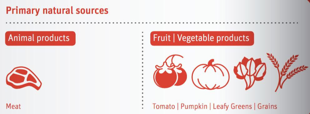 Fruits And Vegetables Especially Vine Such As Tomato Cucumber Zucchini Eggplant Pumpkin Leafy Greens Root Are Important